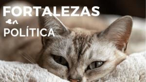 FORTALEZAS EN POLÍTICA, Ana Sanz, B